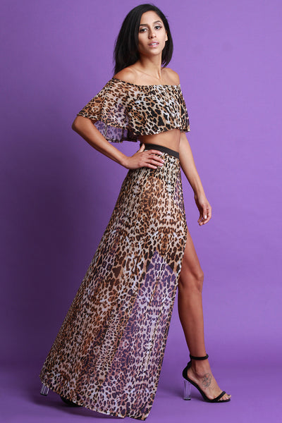 Leopard Print Mesh Two Piece Dress