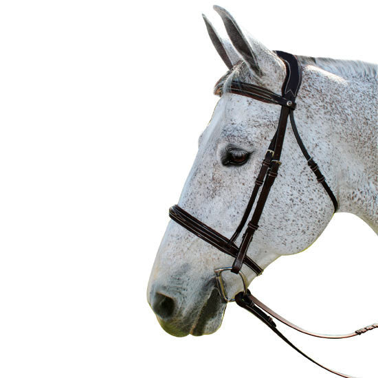 Henri de Rivel Pro Mono Crown Fancy Stitched Padded Leather Bridle