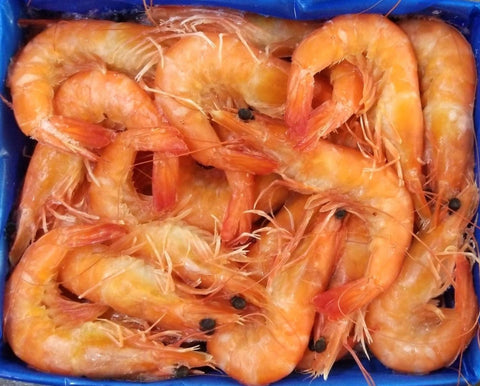 Buy Frozen Cooked Vannamei Prawns (Head On/Shell On) Online for Delivery - Evergreen Seafood Singapore