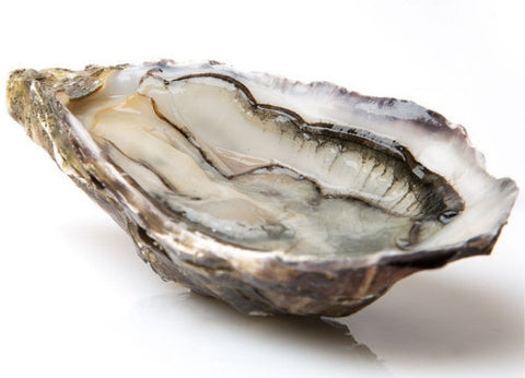 Live France French Oysters, Fine De Claire