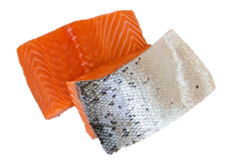 Frozen Salmon Fillet Portion - Evergreen Seafood