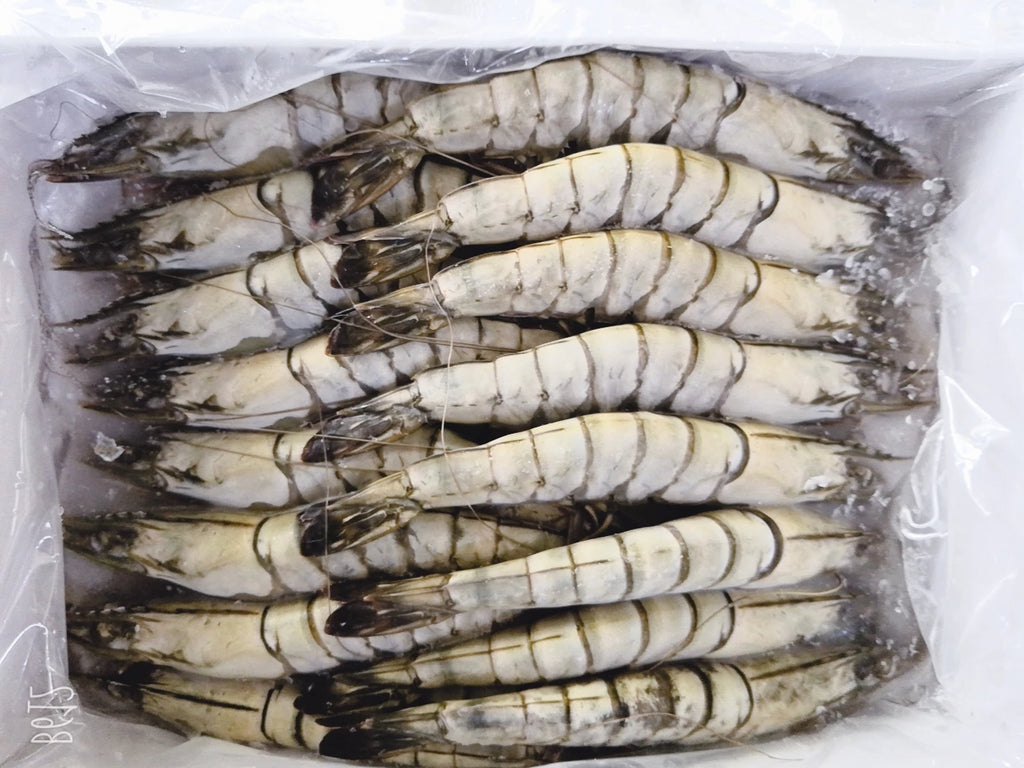Buy Frozen Tiger Prawn (Head On/Shell On) Online for Delivery - Evergreen Seafood Singapore