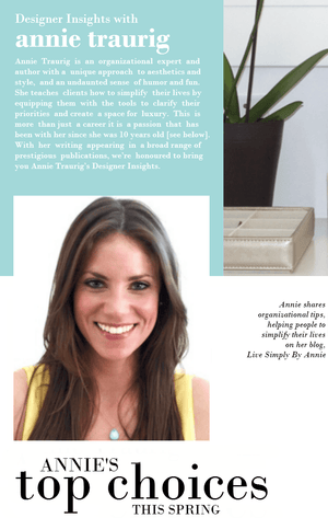 Designer Insights with Annie Traurig