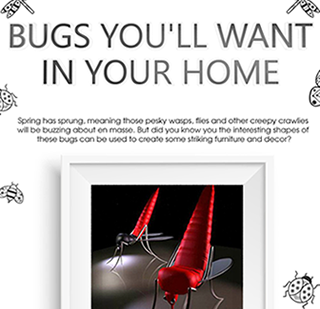 Bugs You Want In Your Home