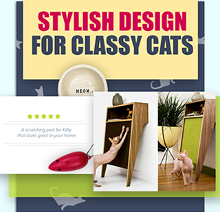 Stylish Designs For Classy Cats