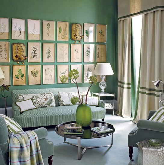 Green Botanical Biology Style Living Room 1 Terrys