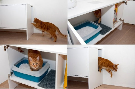 Collage of four photos of a cat getting into a white cupboard and using a litter tray