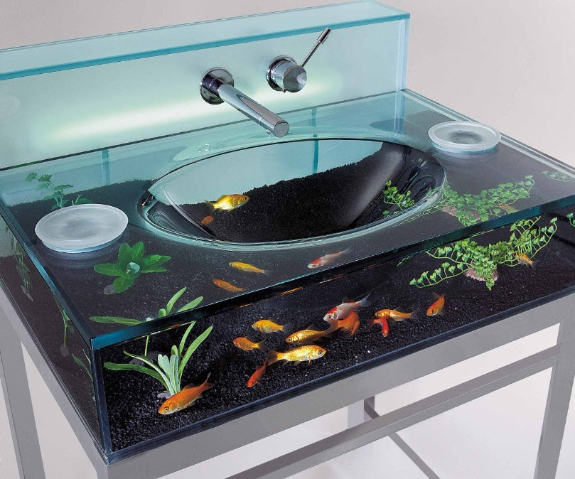 Glass sink which is hollow and contains water and fish