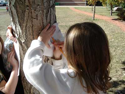 Children leaning a piece of paper on a tree and drawing a picture