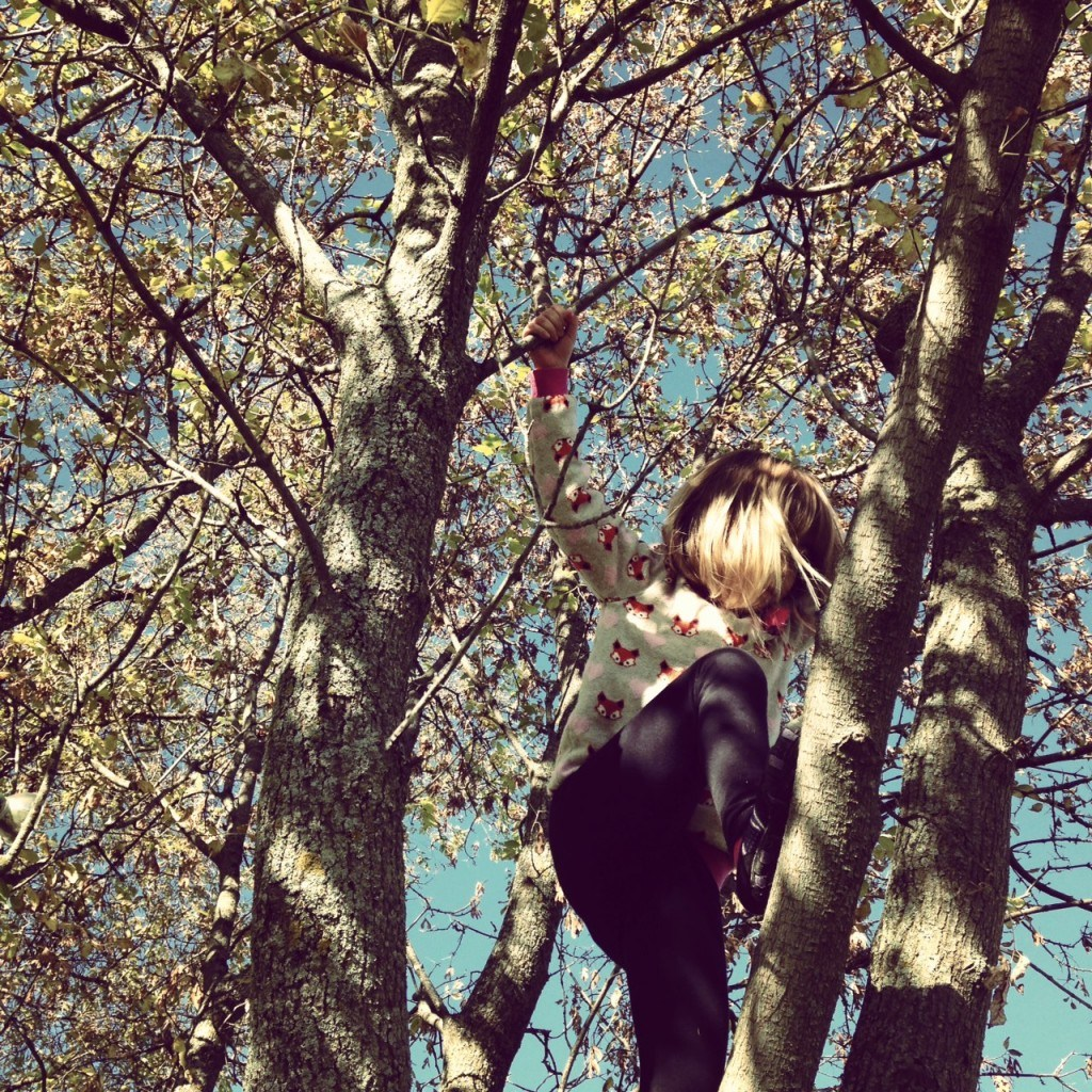 A child climbing up a tree