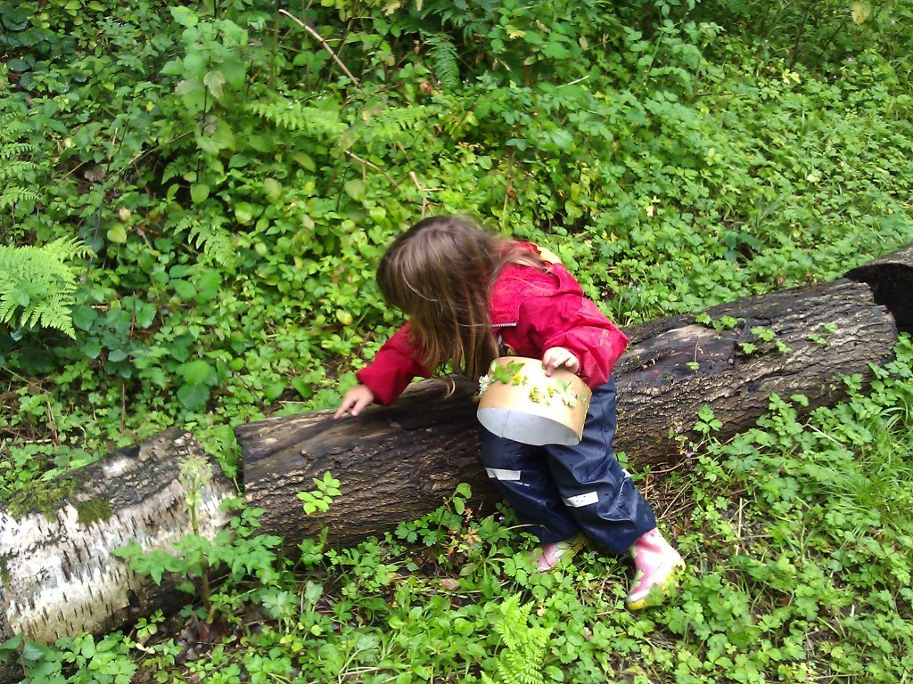 A child sitting on log looking at its bark and insects on it