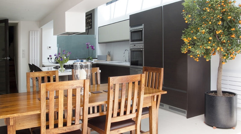 White and dark grey kitchen, with wooden table and indoor orange tree in the corner