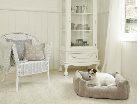 white and cream living space with dog on beige dog bed and white wicker armchair