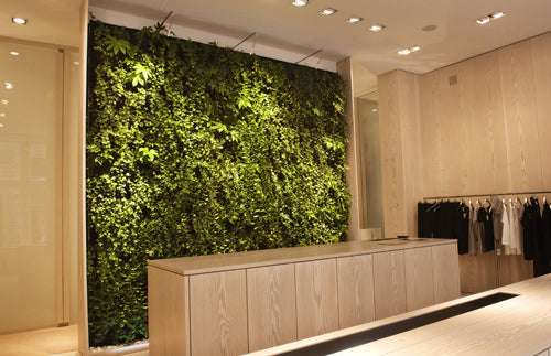 A walk in closet and shower room with full wall of green leafy plants