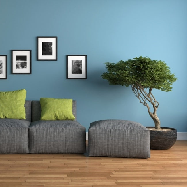 Image Result For Interior Design Ideas For Living Rooms On A Budget