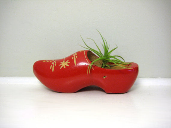A red clog used as a plant pot for a green leafy plant