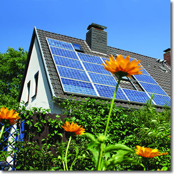 Solar panels on a cottage, with orange flowers in front of the camera