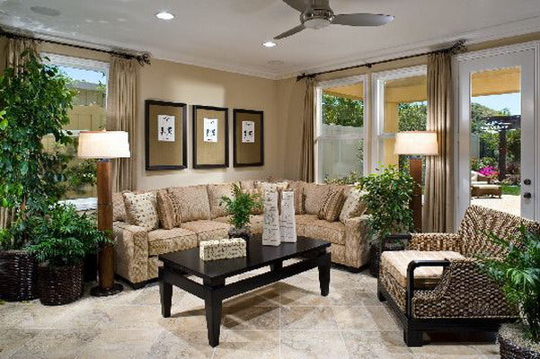 Cream and beige living room with ceiling fan and large leafy plant on the left