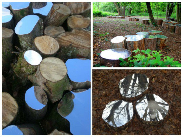 Cut tree trunks in the wood with a mirror panel put on the top of each one