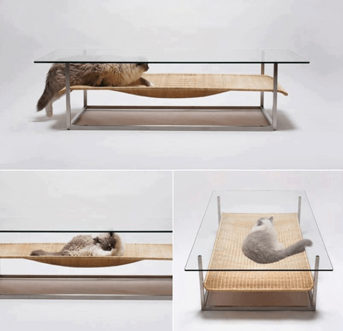 A glass coffee table with hammock shelf for a cat to lie on