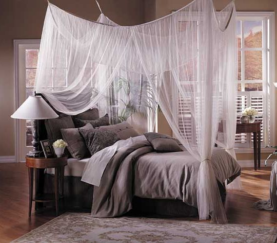 Grey and beige bedding with a white voile canopy around the bed