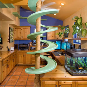 A green round spiral ramp in the kitchen for a cat to climb
