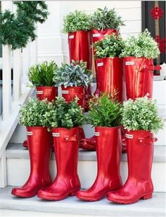 Red wellington boots containing festive shrubbery