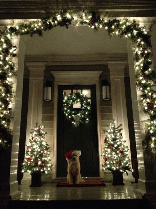 A garland and fairy lights make an arch for a front door, with festive wreath, trees either side of the door and a dog with a Father Christmas hat
