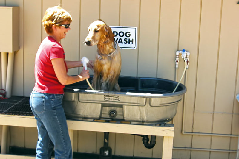 A dog getting washed in a metal bathtub in the garden