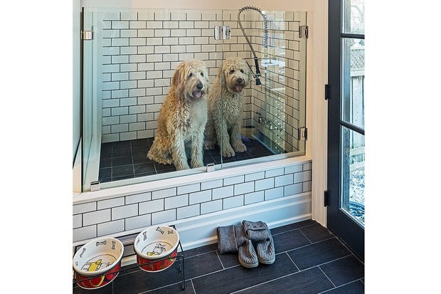 Two dogs in a purpose built white tiled dog shower by the back door