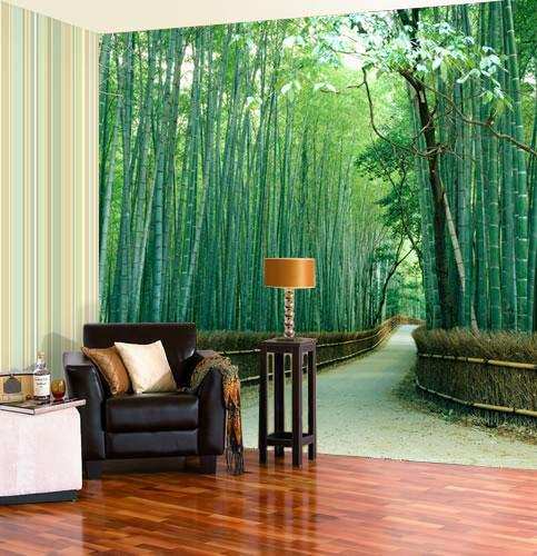 Glossy stained wood floor in front of a wall with a decal of a path through tall green bamboo