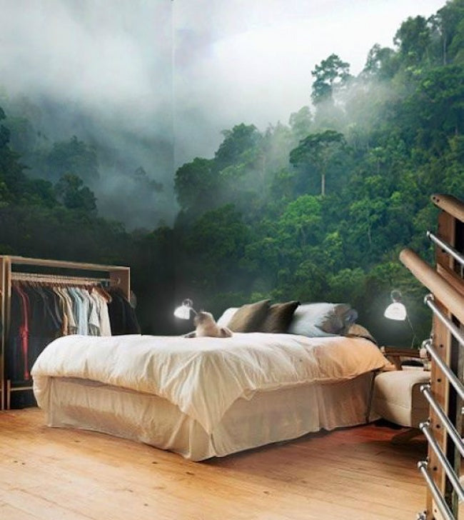 Wallpaper of a misty forest in a bedroom with a cat on a white double bed
