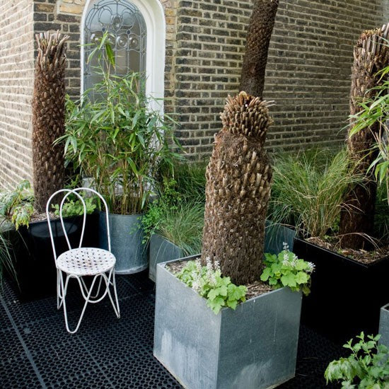 Garden terrace with boxed tree planters