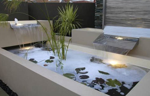 Roof top water feature with wild plants
