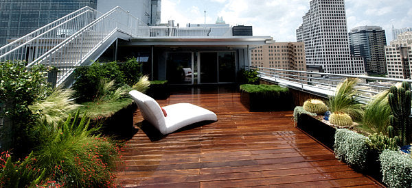 Modern rooftop garden with plants and staining wooden decking