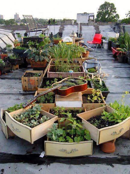 Roof top herb and plant garden, with planters in old wooden drawers