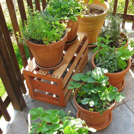 Wooden crate with plant pots on top, and matching pots on a grey tiled garden floor