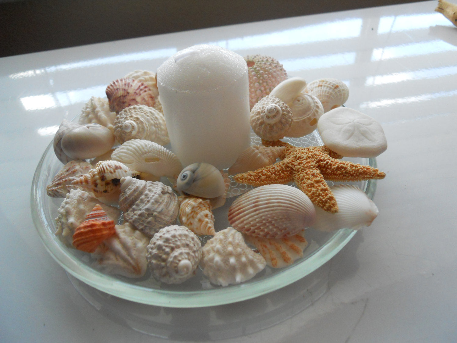 A bowl of shells with a candle in the middle