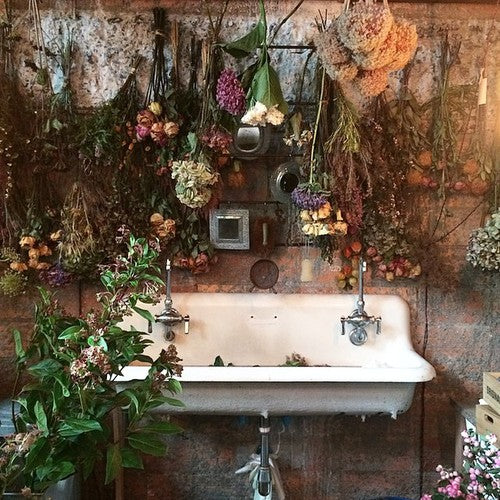 Old style wall sink in an exposed brick room, with lots of plants and flowers hanging from the wall