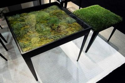 Moss covered black table