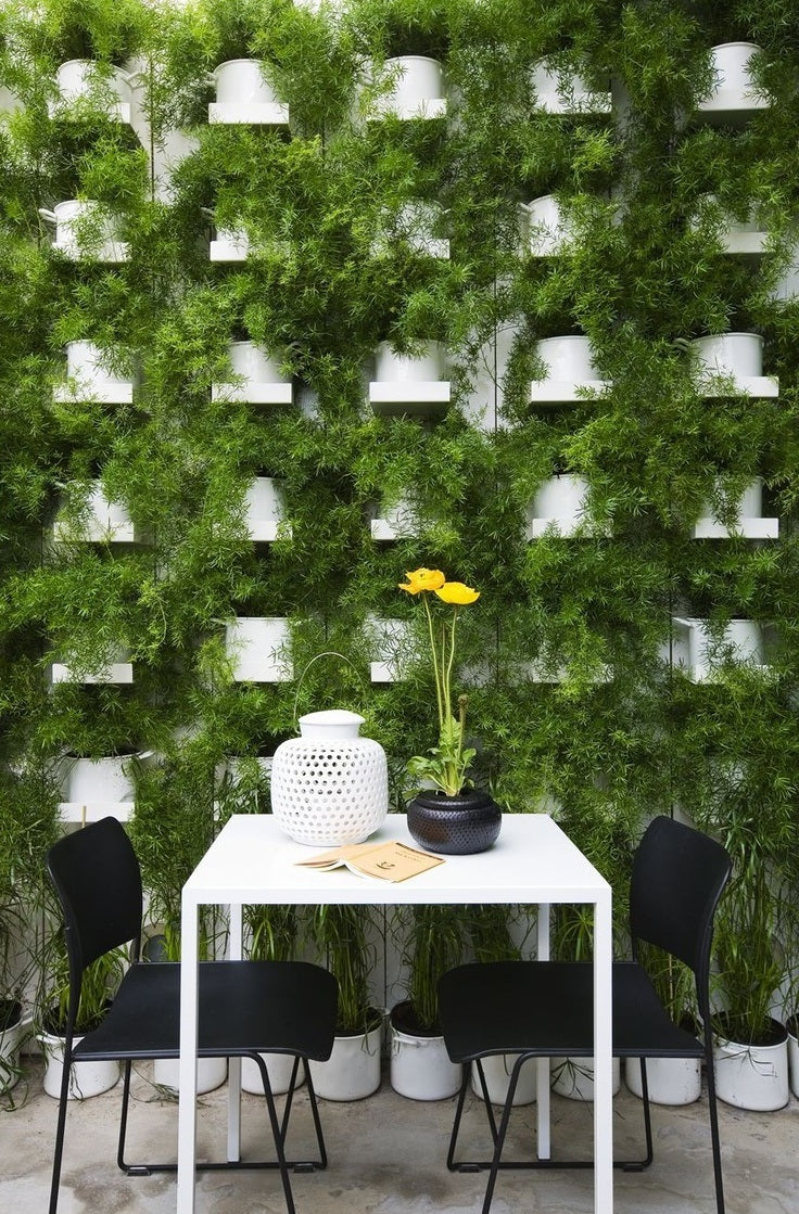 Small white table and two black chairs in front of a Green wall covered in lots of plants