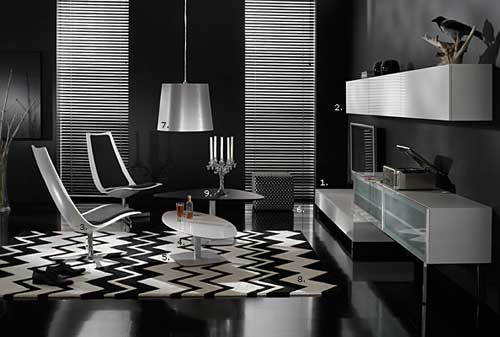 Black and white executive living space