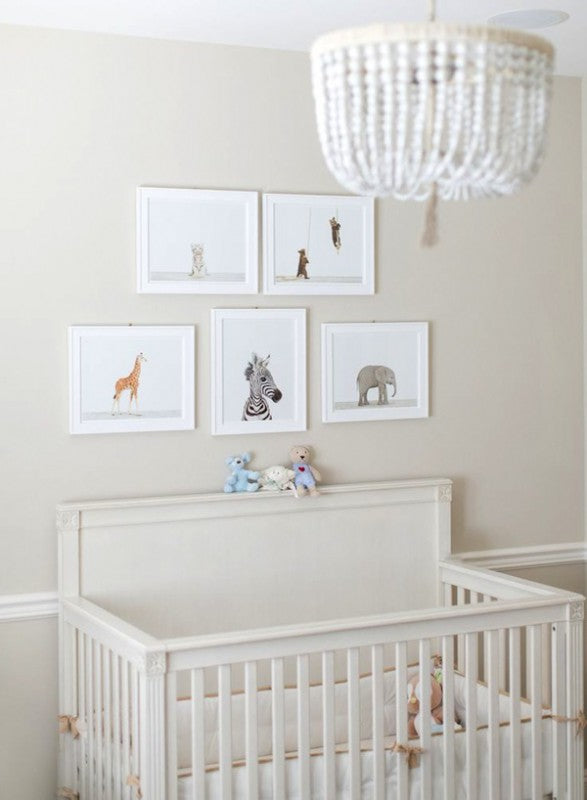 White and cream nursery with animal photos on the wall