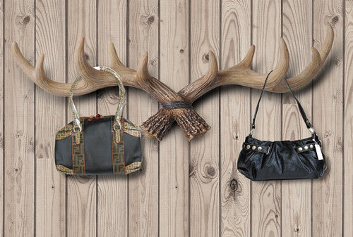 Antlers used to hang bags