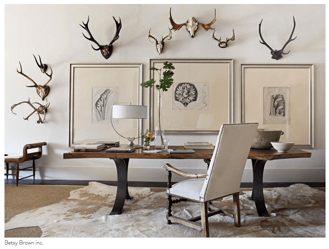Antlers and trophy decorating in a cream office