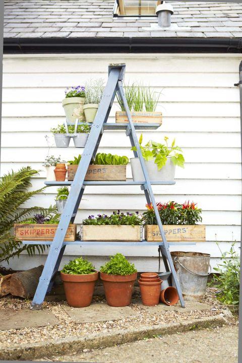 A-frame herb and plant stand with three different shelves