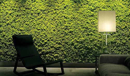 Green textured feature wall in a living room, looks like moss
