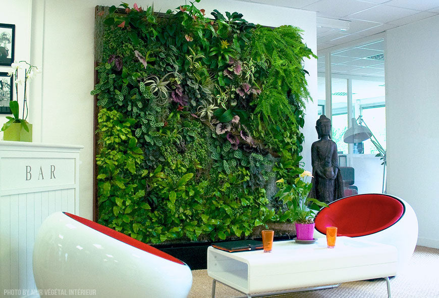 A decorative wall in a white living space, full of greenery