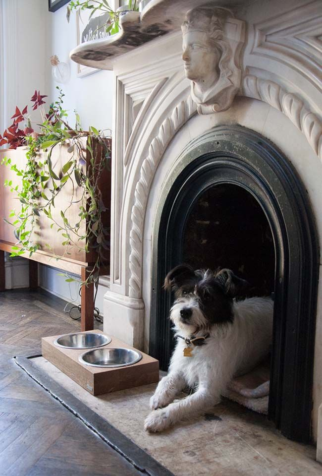 An old fireplace used as a little nook for a dog bed