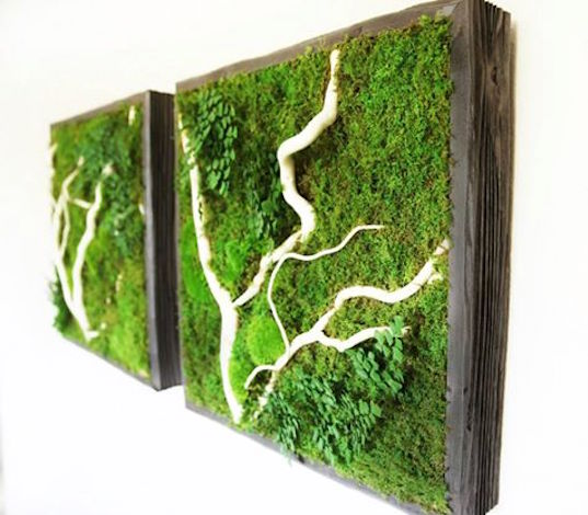 Artisan moss that can be mounted to an interior wall